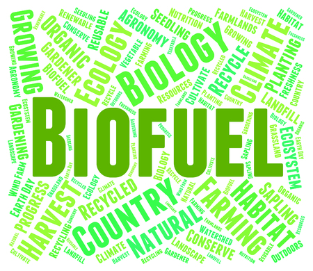 biofuel: Biofuel Word Indicating Green Energy And Biofuels Stock Photo