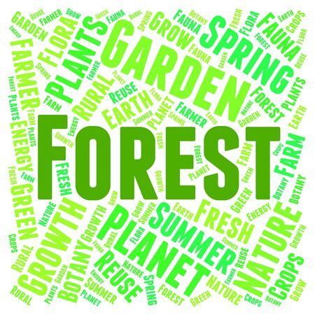 forestation: Forest Word Representing Woods Copse And Woodlands