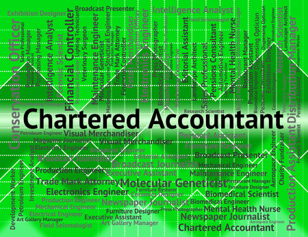 chartered accountant: Chartered Accountant Representing Balancing The Books And Cpa Occupations
