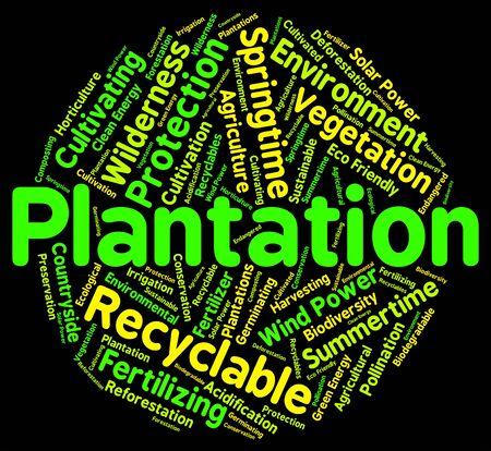 farmstead: Plantation Word Indicating Farmstead Farm And Words Stock Photo