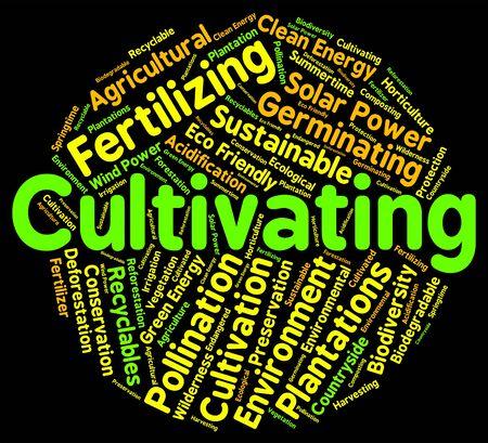 siembra: Cultivar la Palabra Indicando Siembra Cultivar y cultivadas Foto de archivo