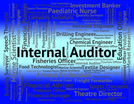 auditing: Internal Auditor Meaning Auditing Words And Inspectors