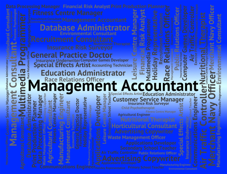 account executive: Management Accountant Representing Balancing The Books And Manager Directorate