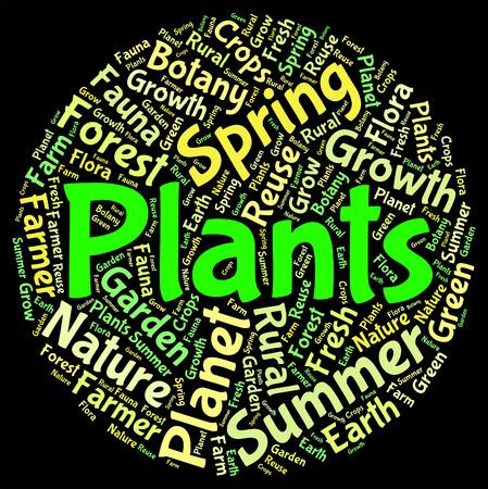 herbage: Plants Word Showing Botany Verdure And Flora