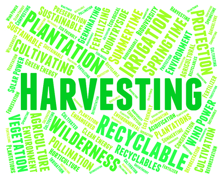 yields: Harvesting Word Showing Grains Gathering And Plants