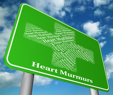 poor health: Heart Murmurs Meaning Poor Health And Infection