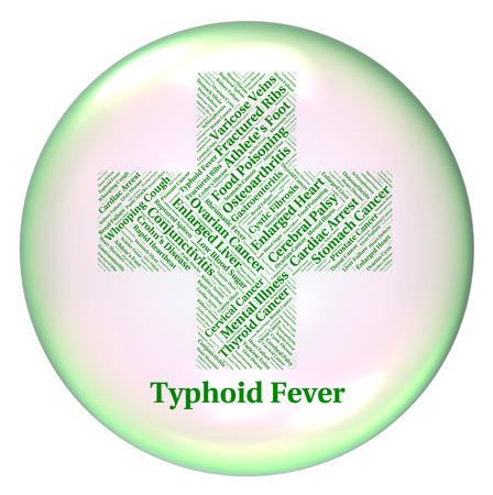 monella: Fiebre Tifoidea En representaci�n de la infecci�n bacteriana sintom�tica Y Salmonella Typhi