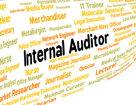 auditor: Internal Auditor Representing Occupations Career And Word
