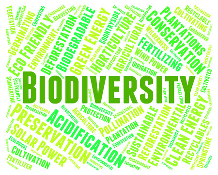critter: Biodiversity Word Representing Animal Kingdom And Biodiverse Stock Photo