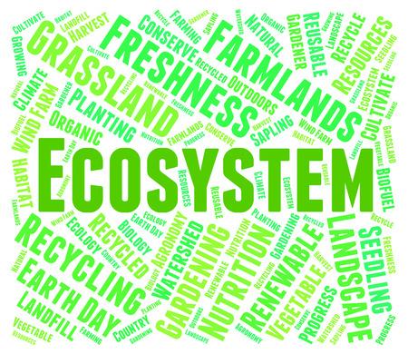 ecosistema: Ecosistema Palabra Mostrando Medio Ambiente de la Biosfera y texto