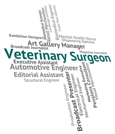 general practitioner: Veterinary Surgeon Meaning General Practitioner And Text