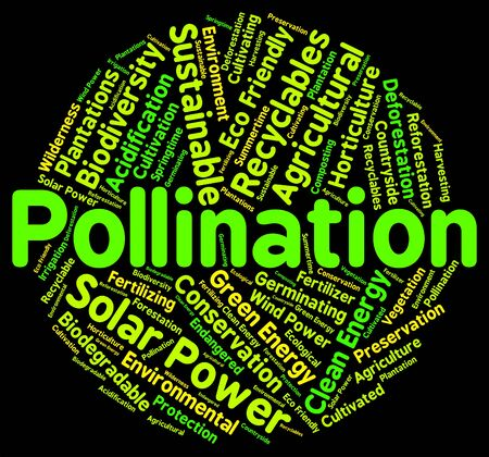 pollination: Pollination Word Indicating Breeds Text And Pollinates