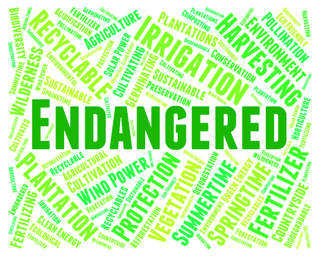 endanger: Endangered Word Meaning Facing Extinction And Endangering