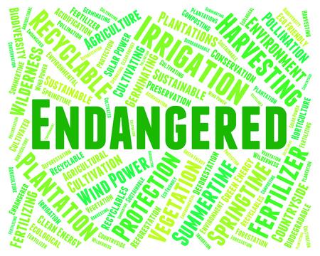 endangering: Endangered Word Meaning Facing Extinction And Endangering