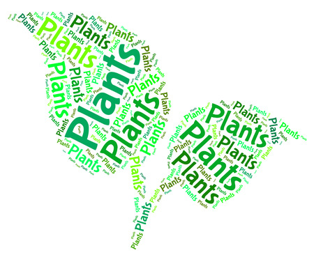 herbage: Plants Word Representing Foilage Botany And Text Stock Photo