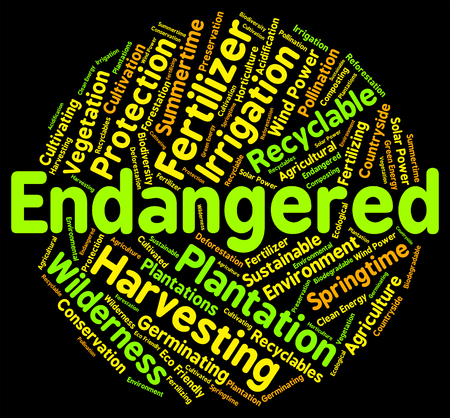 endanger: Endangered Word Indicating At Risk And Threatened