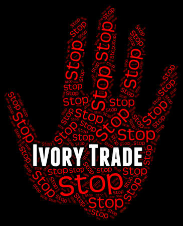 tusk: Stop Ivory Trade Showing Elephant Tusk And Exporting