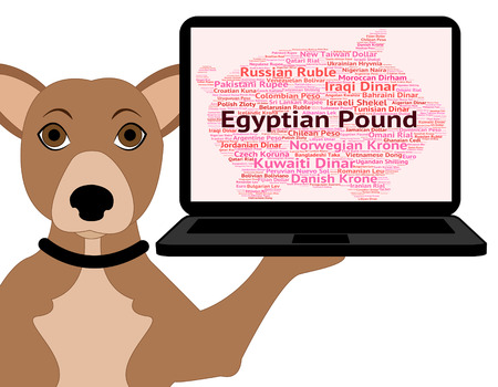 foreign currency: Egyptian Pound Showing Foreign Currency And Wordcloud Stock Photo
