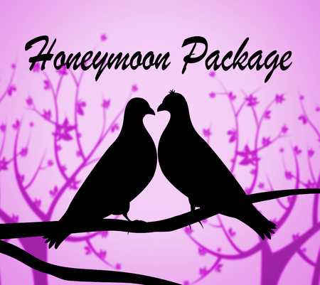 tour operator: Honeymoon Package Representing All Inclusive And Travel Stock Photo