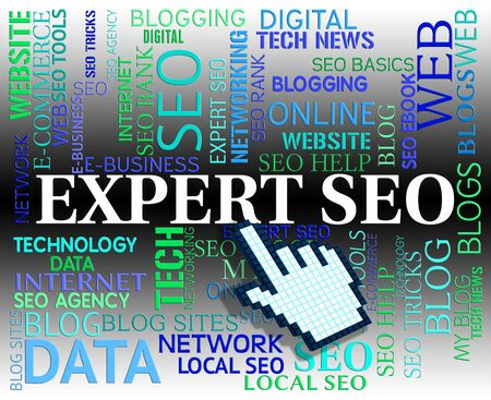 search engines: Expert Seo Indicating Search Engines And Www