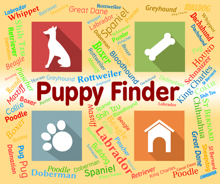 finder: Puppy Finder Indicating Search For And Pinpoint