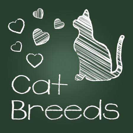 reproducing: Cat Breeds Indicating Breeding Pet And Reproducing