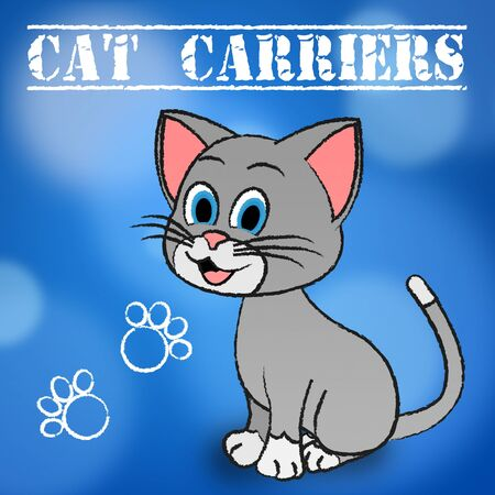carriers: Cat Carriers Representing Pedigree Cage And Crate Stock Photo
