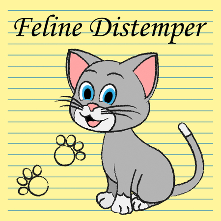 pedigree: Feline Distemper Meaning Pedigree Vaccine And Cats Stock Photo