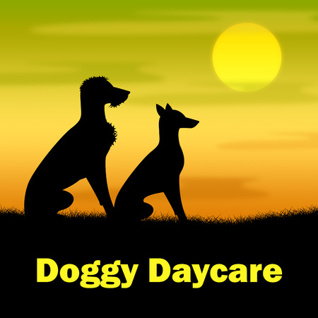 canines: Doggy Daycare Indicating Grassy Canines And Night Stock Photo