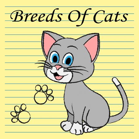 hijos: Razas de gatos Representaci�n de apareamiento y reproducci�n de Offspring