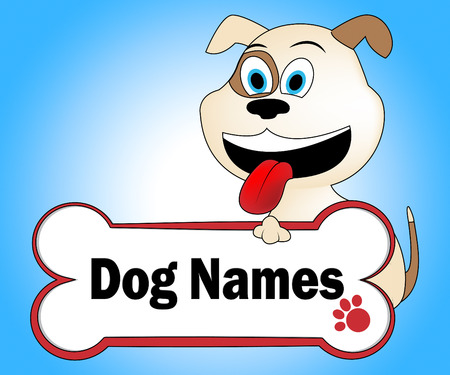 Dog Names Showing Doggy Pup And Doggie Stock Photo