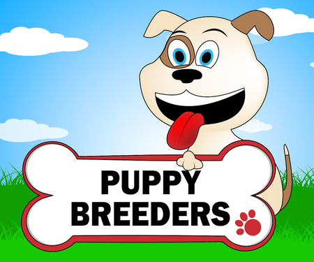 reproducing: Puppy Breeders Indicating Pups Dogs And Canines