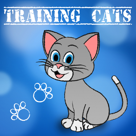 trained: Training Cats Indicating Pets Trained And Felines