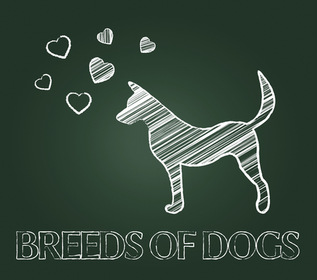 husbandry: Breeds Of Dogs Showing Pets Reproduce And Offspring