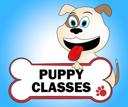 educated: Puppy Classes Meaning Educated Classrooms And Pets Stock Photo