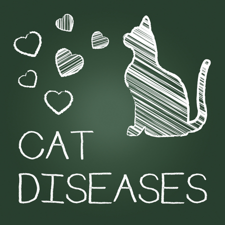 puss: Cat Diseases Meaning Kitten Puss And Physician
