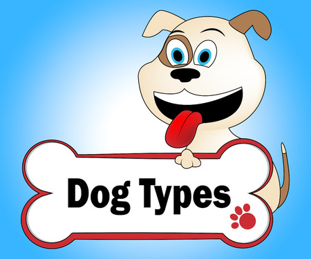 pedigree: Dog Types Indicating Category Pedigree And Class