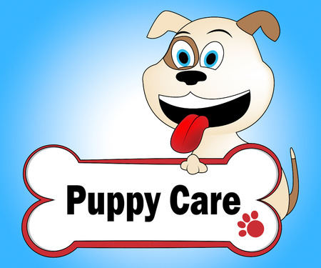 looking after: Puppy Care Meaning Looking After And Doggy