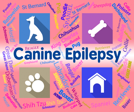 canine: Canine Epilepsy Showing Pet Puppies And Fits Stock Photo