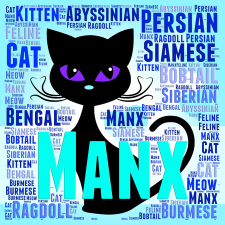 reproduce: Manx Cat Indicating Breeds Pets And Kitty Stock Photo