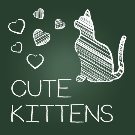cute kittens: Cute Kittens Showing Domestic Cat And Lovely Stock Photo