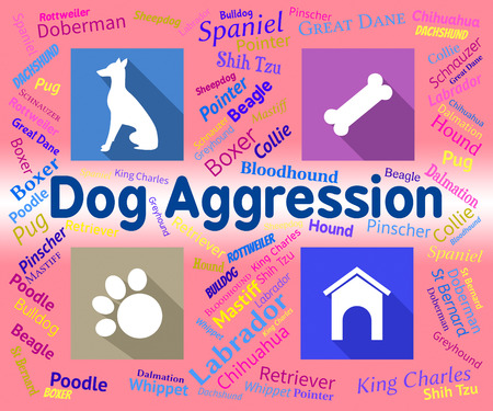 aggression: Dog Aggression Indicating Attack Assault And Threatening