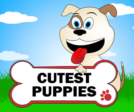 canines: Cutest Puppies Showing Canines And Lovely Dogs