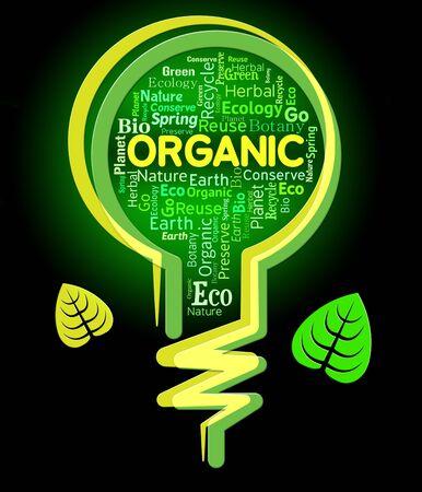 healthful: Organic Lightbulb Indicating Healthful Nature And Environment Stock Photo