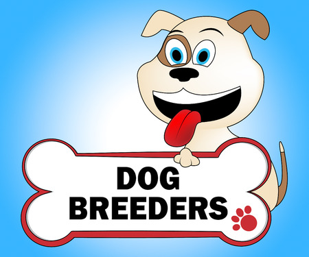 breeders: Dog Breeders Showing Pups Mating And Reproducing Stock Photo
