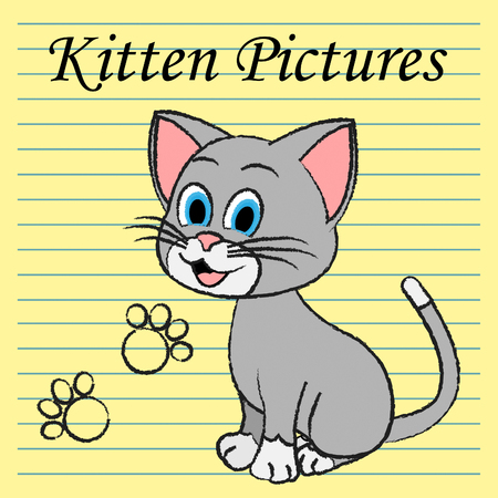 felines: Kitten Pictures Showing Felines Pets And Cats Stock Photo