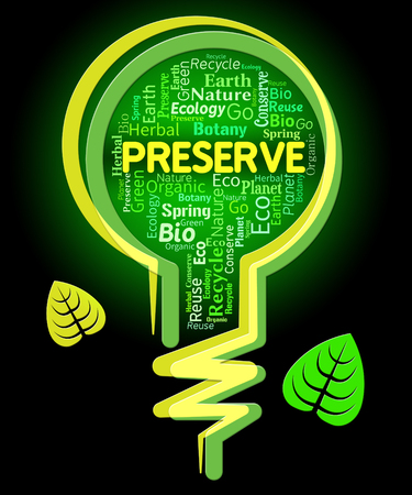 sustain: Preserve Lightbulb Representing Countryside Outdoors And Environmental Stock Photo
