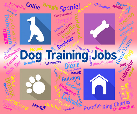 doggy position: Dog Training Jobs Representing Coaching Canines And Occupation Stock Photo