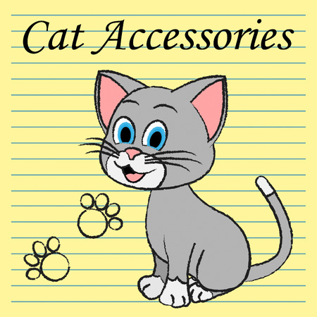 felines: Cat Accessories Representing Product Felines And Pets Stock Photo