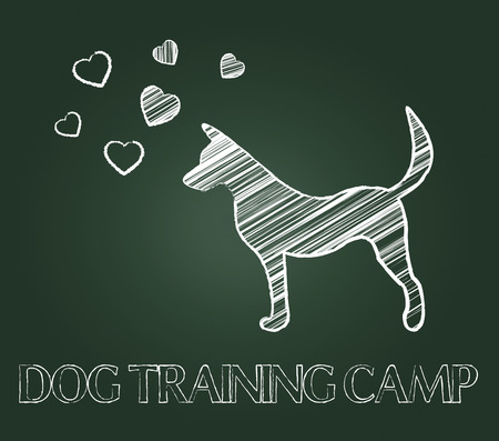 canine: Dog Training Camp Showing Instruction Taught And Canine